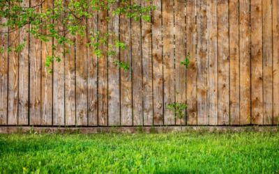 Living in a New Development? Consider Neighbour Group Fencing